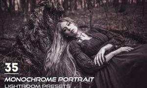 35 Monochrome Portrait Lightroom Presets 3844398