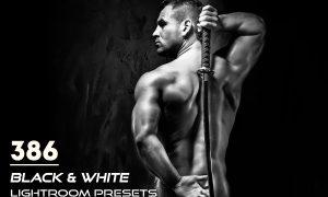 386 Black & White Lightroom Presets 3817477