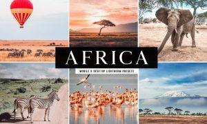 Africa Mobile & Desktop Lightroom Presets