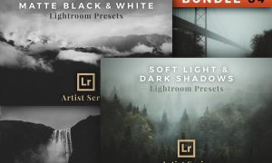Artist Series – Lightroom Bundle 04 2782619