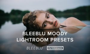 Bleeblu Moody Lightroom Presets
