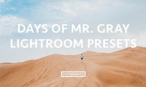 Days of Mr. Gray Lightroom Presets
