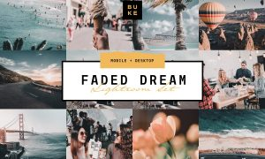 Faded Dream Lightroom Preset 3831708