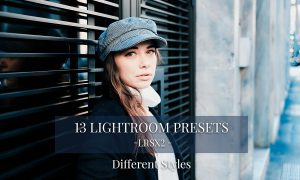 LRSX2 - 13 Unique Lightroom presets 2255443
