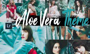 Neo Aloe Vera Theme Desktop Lightroom Presets