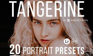 Tangerine Portrait Presets for Lightroom & ACR