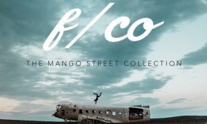 The Mango Street Collection   Lightroom Presets