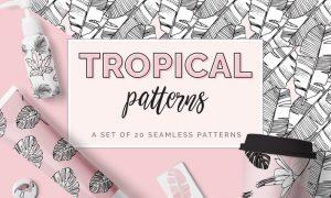 Tropical Patterns FH7KD3 - AI, EPS, JPG, PNG