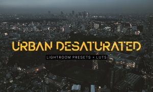 Urban Desaturated Lightroom Presets 2266110