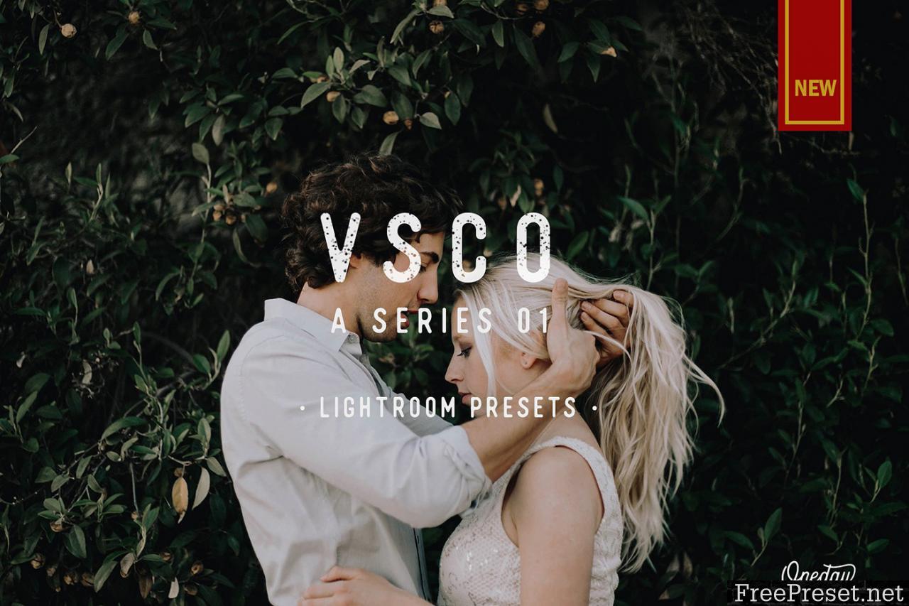 VSCO A Series 01 Lightroom Presets 2248768
