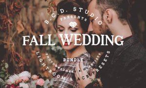 30 Fall Wedding LR & PS Presets 1820011