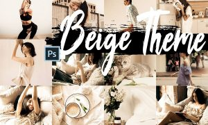 5 Beige Actions, ACR and LUT presets
