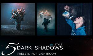 5 Lightroom Presets in dark tones 1821528