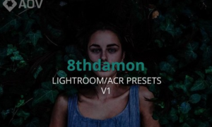 AOV x 8thDamon Lightroom Presets
