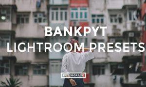 Bankpyt Lightroom Presets