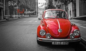 B&W LR Preset with Red Element 2199966