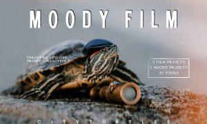 Clean & Moody Film Lightroom Presets 3890128