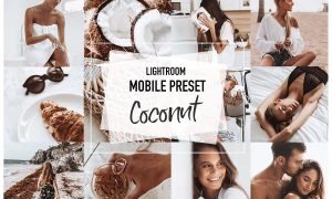 COCONUT 4 Lightroom mobile Presets 3956942