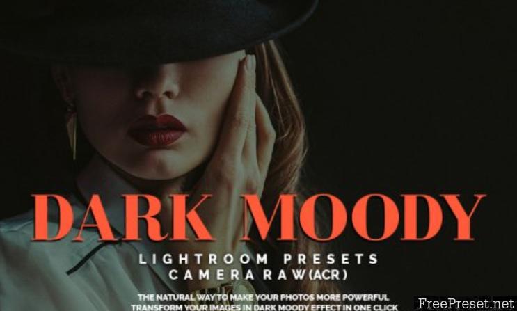 Dark Moody Lightroom Presets and Camera Raw(ACR)