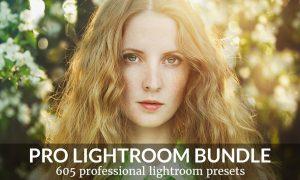 Everything Bundle Lightroom Presets 100550