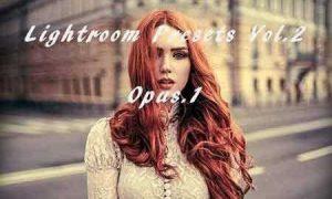 Lightroom Presets Vol.2 2016264
