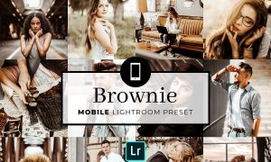 Mobile Lightroom Preset Brownie 3321741