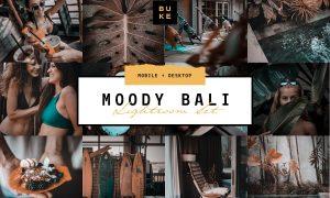 MOODY BALI TRAVEL LIGHTROOM PRESETS 3916193