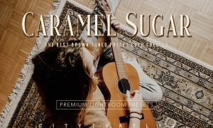 Moody Brown Caramel Sugar Presets 3890188