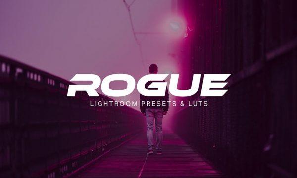 Rogue - Lightroom Presets and LUTs 1974021