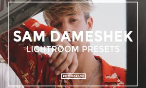 Sam Dameshek Lightroom Presets