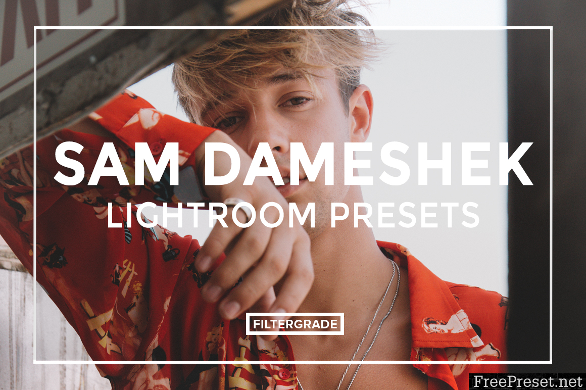 Sam Dameshek Lightroom Presets