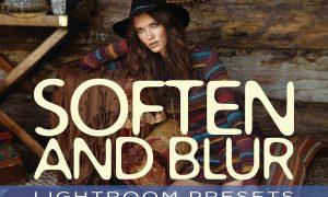 Soften and Blur Lightroom Presets 1514067