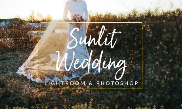 Sunlit Wedding Presets LR & PS 1344250