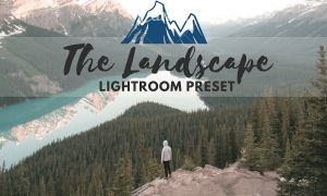 The Landscape Lightroom Preset 1938360