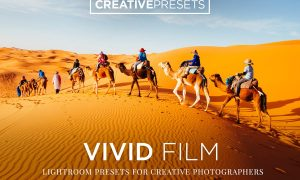 Vivid Film Lightroom Presets 2042925