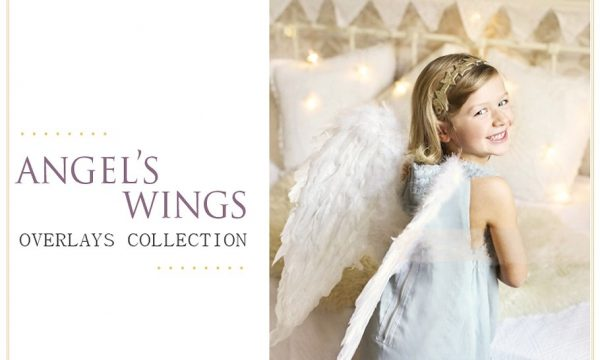 White Wings Photo Overlays PNG 1368510