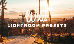 WILD - Presets Pack 1644310