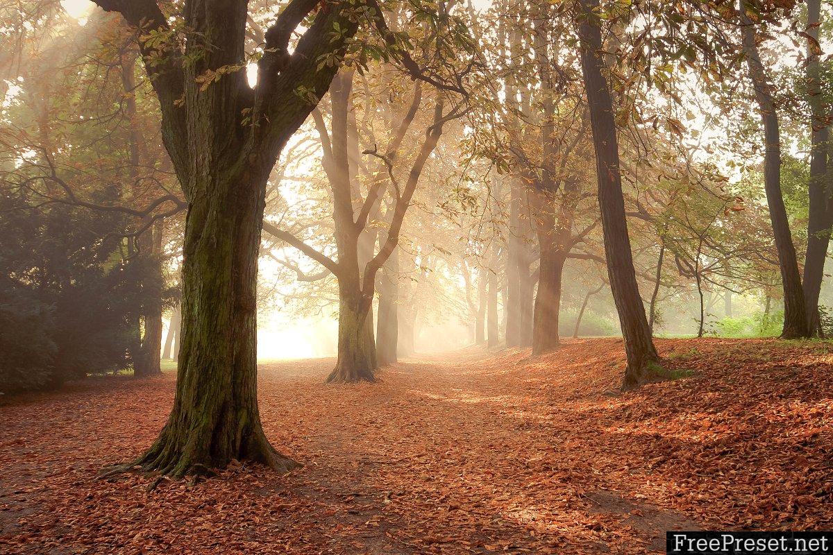 18 Sharpen your Landscape Presets 1110057