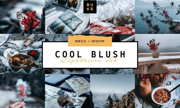 5 Cool Blush Lightroom Presets Pack 4001769