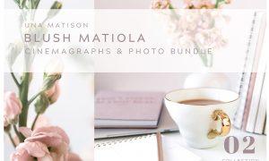 Animation & photo bundle. 02  2479021