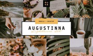 Augustina Lightroom Preset 4008293