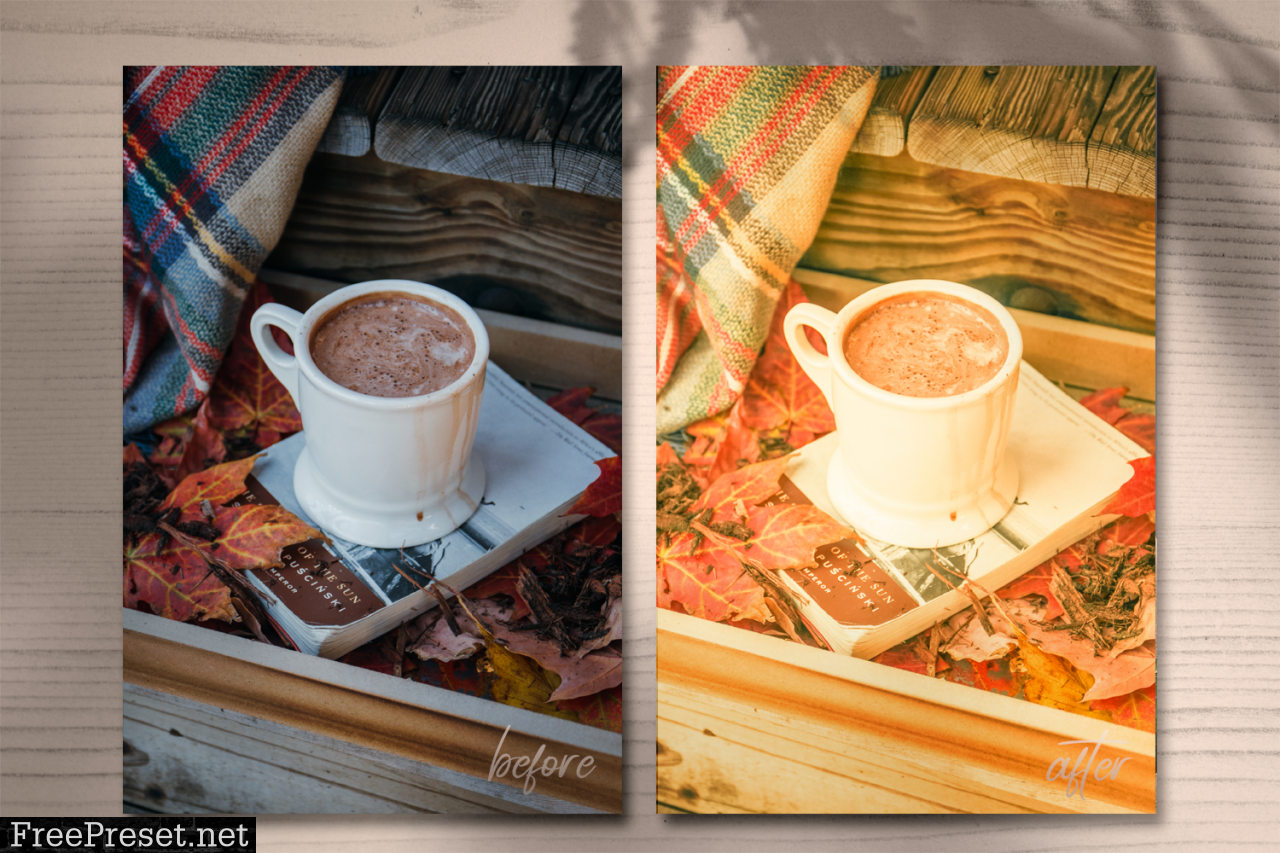 Autumn Presets Summer Lightroom 1695831