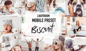 BISCUIT 4 Mobile Lightroom Presets 3956972