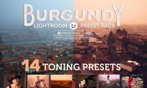 Burgundy Lightroom Preset Pack 519087