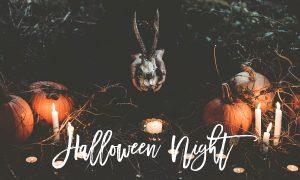 Halloween Night Lightroom Preset 938935
