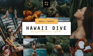 Hawaii Tropical Lightroom Preset 3916299