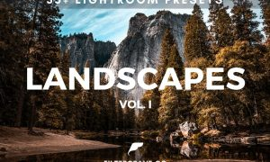 Landscape Lightroom Presets 619742