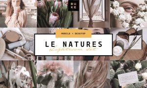 Le Natures Neutral Lightroom Presets 4001970