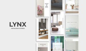 Lynx Instagram Stories 2489593