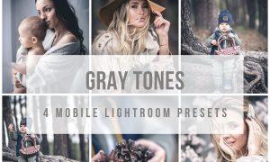 Mobile Lightroom Presets Gray tones 3889930